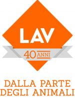 40_LAV_logo